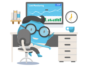 link monitoring